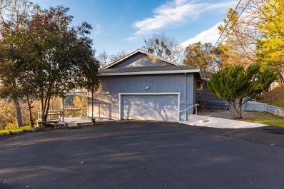 200 Aaron Cool Court, Cool, CA 95614 - #: 19008271