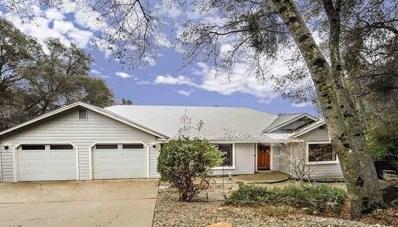 779 E. Oakside Drive, Sonora, CA 95370 - #: 19009317