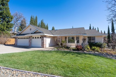 820 Oak Crest Circle, Placerville, CA 95667 - #: 19011147