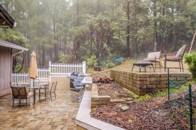 6350 Red Robin Rd, Placerville, CA 95667 - #: 19013631