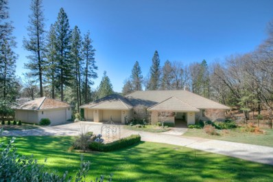 19635 Eagle Ridge Road, Foresthill, CA 95631 - #: 19015645