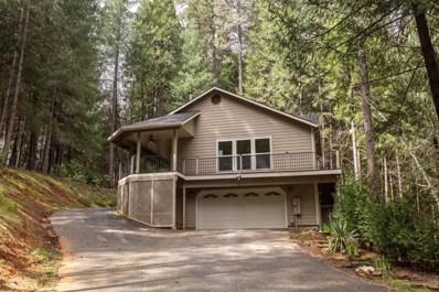 15993 Shebley Road, Grass Valley, CA 95945 - #: 19016154