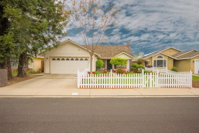 913 Multnomah Drive, Modesto, CA 95350 - #: 19020782