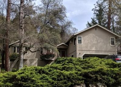 12937 Golden Trout Way, Penn Valley, CA 95946 - #: 19021769