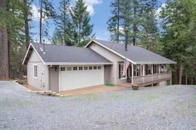 6390 Red Robin Road, Placerville, CA 95667 - #: 19023348