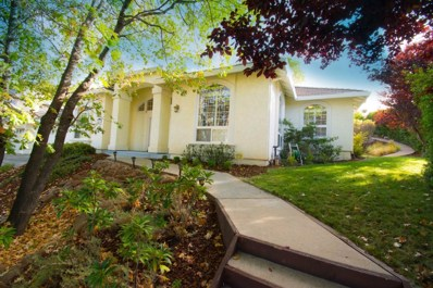 3437 Chasen Drive, Cameron Park, CA 95682 - #: 19024450