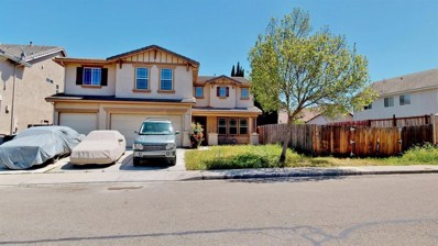 710 Skimmer Drive, Patterson, CA 95363 - #: 19025149