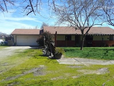 16567 Road 98B, Woodland, CA 95695 - #: 19031092