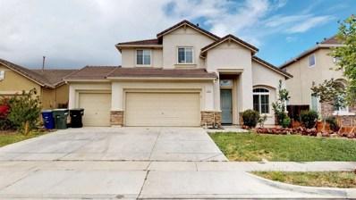 1353 Cougar Creek Drive, Patterson, CA 95363 - #: 19031433
