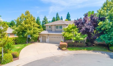 5048 Castle Combes Court, Granite Bay, CA 95746 - #: 19032385