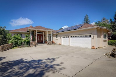 17582 Chaparral Drive, Penn Valley, CA 95946 - #: 19033153