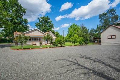 9704 S Oak Grove Avenue, Knights Landing, CA 95645 - #: 19036337