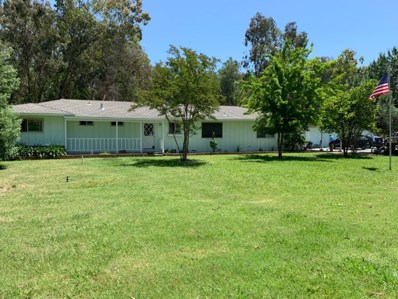 12443 Clay Station Rd, Herald, CA 95638 - #: 19038058