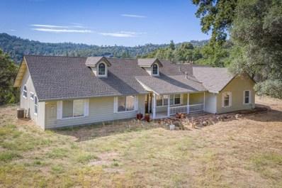12790 Conestoga Drive, Grass Valley, CA 95949 - #: 19038588