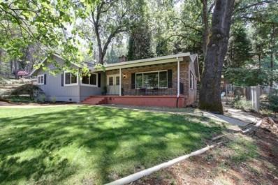 11485 Tammy Way, Grass Valley, CA 95949 - #: 19041691