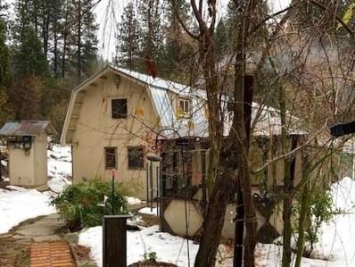 34600 Casa Loma Road, Alta, CA 95701 - #: 19043814