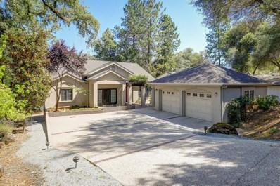 13373 Driftwood Court, Penn Valley, CA 95946 - #: 19044813