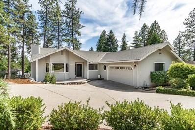 11159 Hackett Court, Grass Valley, CA 95949 - #: 19044828