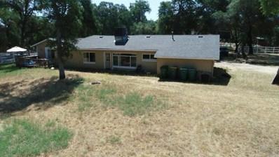 3203 Meder Road, Shingle Springs, CA 95682 - #: 19047194