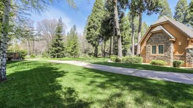 13101 Somerset Drive, Grass Valley, CA 95945 - #: 19047595