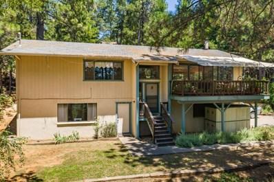 11126 Norager Way, Grass Valley, CA 95949 - #: 19047887