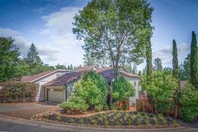 350 Vistamont Drive, Grass Valley, CA 95945 - #: 19047971