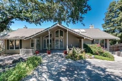 10007 River Oak Circle, Oakdale, CA 95361 - #: 19049189