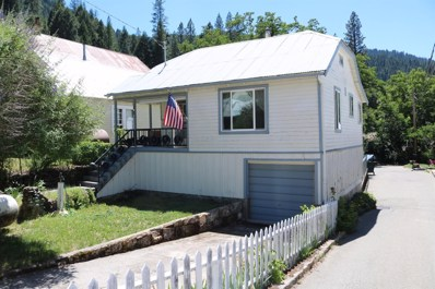 302 Commercial Street, Downieville, CA 95936 - #: 19049258