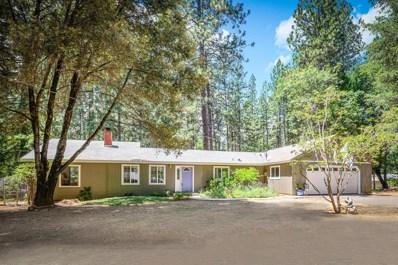 14012 Linden Road, Grass Valley, CA 95945 - #: 19050298