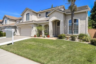 8786 White Peacock Way, Elk Grove, CA 95624 - #: 19050830