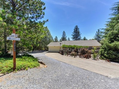 17080 Mountain View Drive, Applegate, CA 95703 - #: 19051135