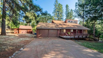 5559 Glen Drive, Foresthill, CA 95631 - #: 19052907