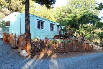 20401 Timber Ridge, Pine Grove, CA 95665 - #: 19053344