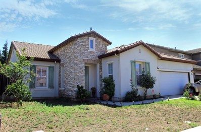 560 Henley Parkway, Patterson, CA 95363 - #: 19053642