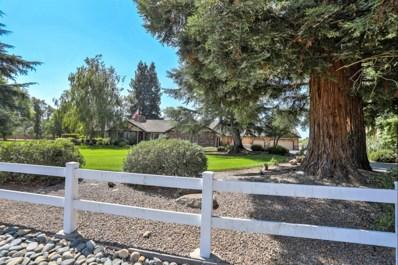10630 Sheldon Woods Way, Elk Grove, CA 95624 - #: 19053809