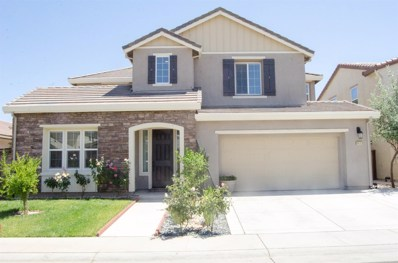 9933 Great Skua Way, Elk Grove, CA 95757 - #: 19056080