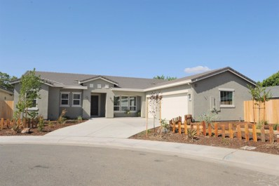 8581 New Mills Court, Elk Grove, CA 95624 - #: 19057105
