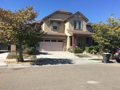 17401 Mill Stone Way, Lathrop, CA 95330 - #: 19057646
