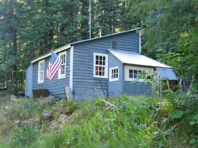 104 Mountain House Road, Alleghany, CA 95910 - #: 19060634