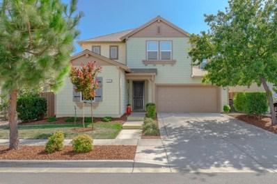 1338 Newton Drive, Woodland, CA 95776 - #: 19060946