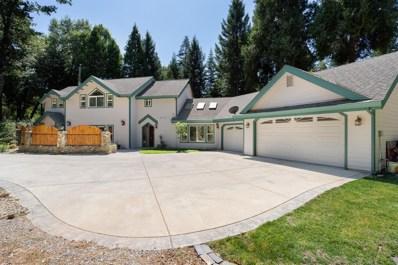 2400 Mayflower Road, Pollock Pines, CA 95726 - #: 19061329