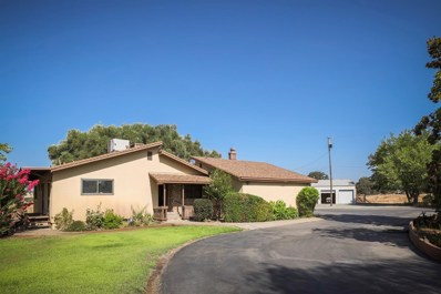 10183 Southworth Road, Valley Springs, CA 95252 - #: 19061964