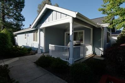 145 Highlands Court, Grass Valley, CA 95945 - #: 19062347