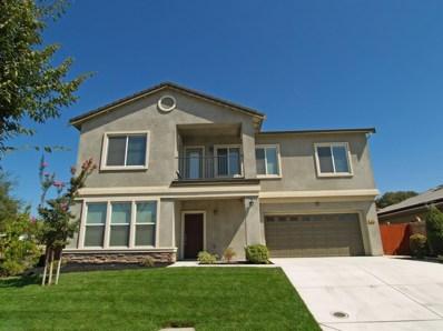 403 Shadow Creek Avenue, Oakdale, CA 95361 - #: 19064194