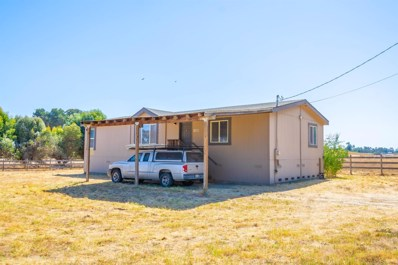 11645 McKinley Road, Herald, CA 95638 - #: 19064856