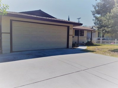 167 W Woodland Avenue, Woodland, CA 95695 - #: 19065395
