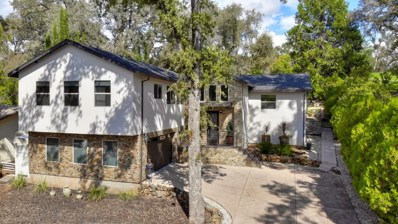 12784 Lakeshore, Auburn, CA 95602 - #: 19066040