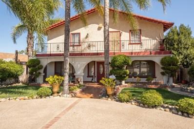 8816 River Road, Patterson, CA 95363 - #: 19067831