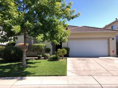 3213 Tree Swallow Circle, Elk Grove, CA 95757 - #: 19069552
