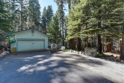 3205 Castlewood Circle, Pollock Pines, CA 95726 - #: 19071865